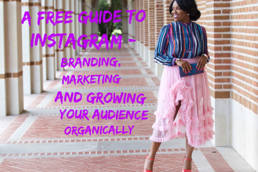 A Free Guide to Instagram – Branding, Marketing and Growing your Audience Oganically